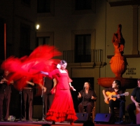 Flamenco night. CordobaTurismo