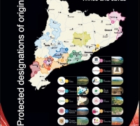 Catalonia DO Map