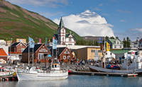 Husavik ©www.iceland.is